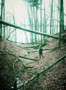 laukinis trail kaunas